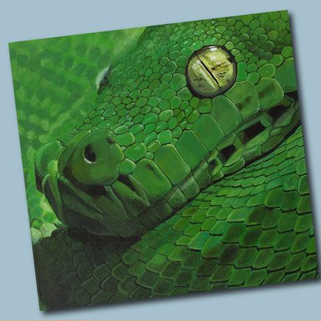 Acrylic Snake.png