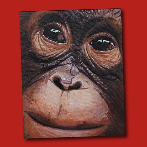 Wild Eyes - Orangutan.png