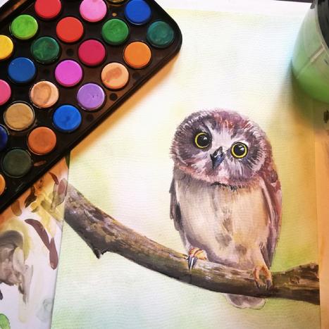 Watercolour Owl.png