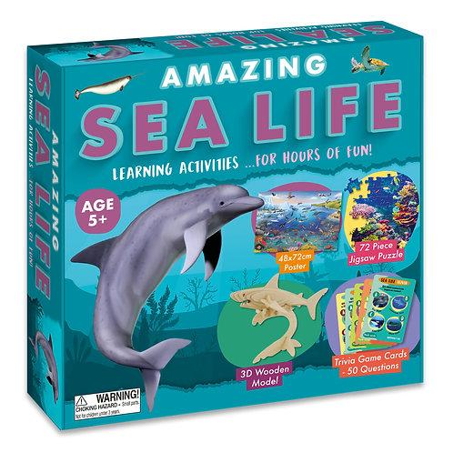 Amazing Activity Box Set - Sea Life