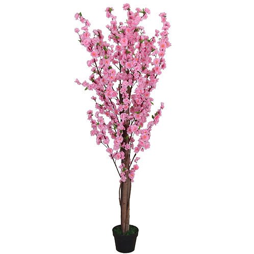 AP25 - PEACH FLOWER SILK 0.6 Metres Tall
