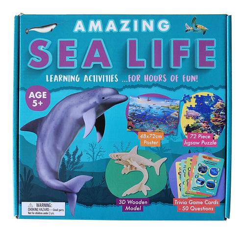 Amazing Sea Life - Activity Box Set