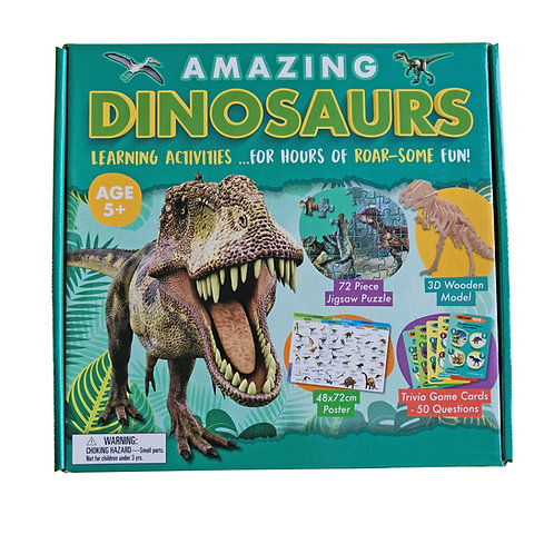 Amazing Dinosaurs - Activity Box Set