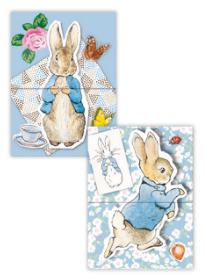 Mini Notepads - Peter Rabbit
