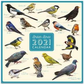 2022 Square Calendar - Patricia MacCarthy Birds