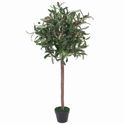 AP18 - OLIVE TREE SILK 1.4 Metres Tall