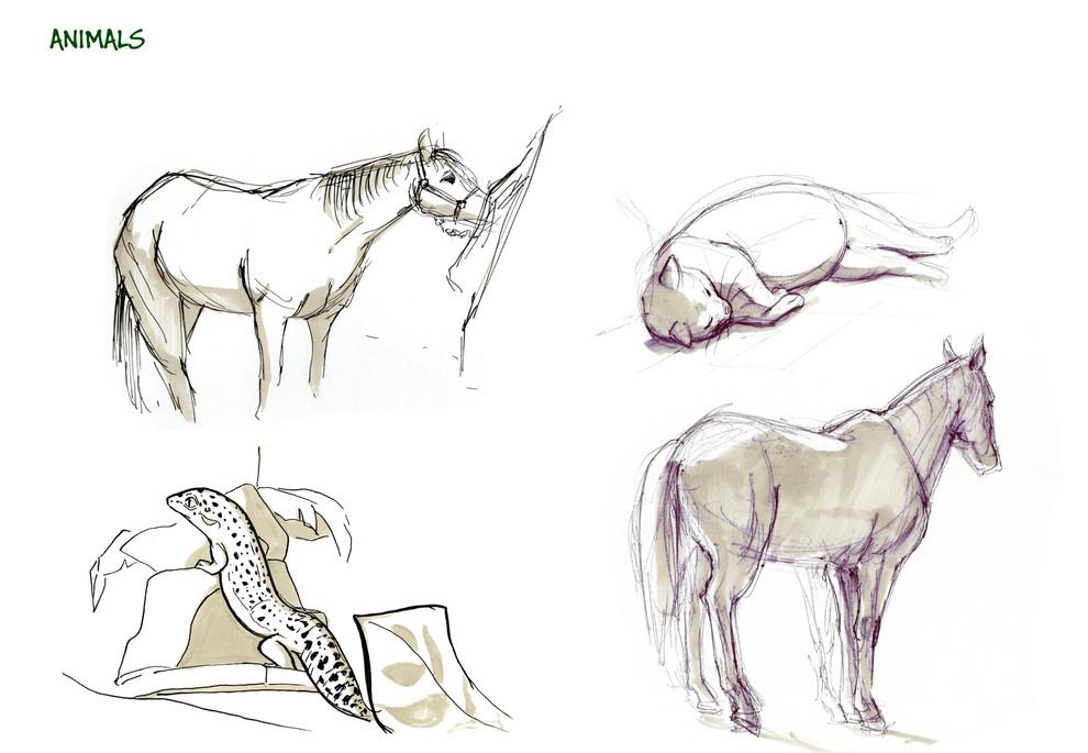 sketchslides_animals1_edited.jpg