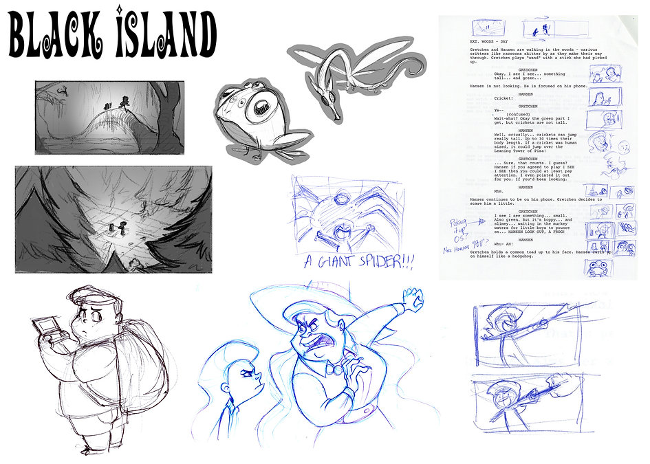 portfolio_slides_blackisland.jpg