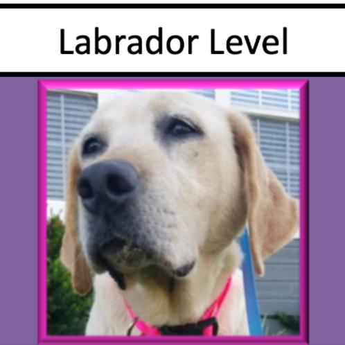 Labrador Level Sponsorship