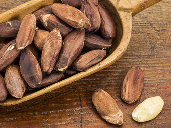 Organic Pili Nuts and Useful Informations
