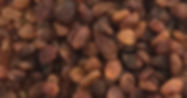 izmir organic sultana raisins.jpg