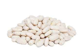 Food Export Group is the supplier of different kinds of white beans in bulk basis.