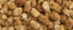 dried mulberies, white mulberries, black mulberries, mulberry crumbles, organic dried mulberries