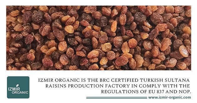 Izmir Organic is the BRC certified Turkish Sultana Raisins Production