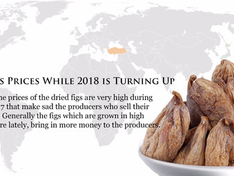 Dried Figs Prices While 2018 is Turning Up