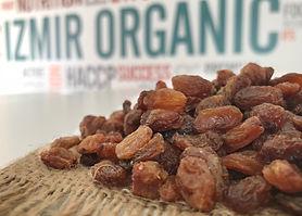 dried-raisins.jpg