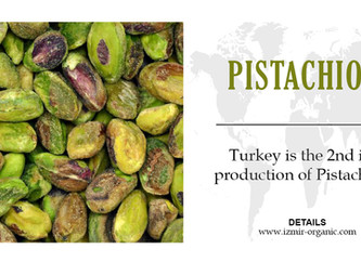Turkey is the 2nd in production of Pistachios