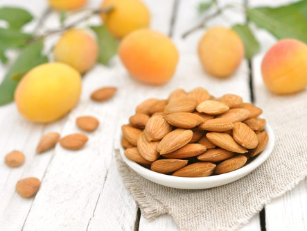 What nutrients do apricot kernels contain?