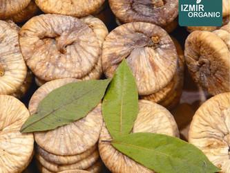 2017/2018 Season Traditional Turkish Dried Figs Market Update