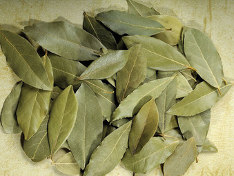 Usage of Bay Leaves (Laurel Leaves)