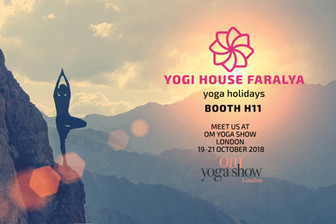 Welcome to Yogi House!