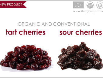 Dried Sour Cherries as New Product