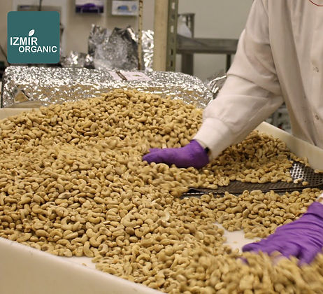 İzmir Organic Quality Control
