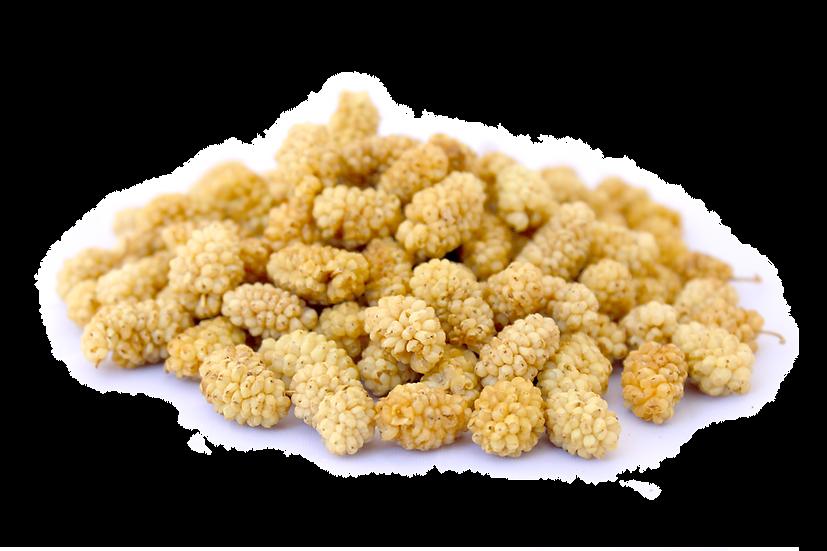 regular sun dried mulberries