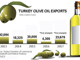 Olive Oil Export has risen Fivefold