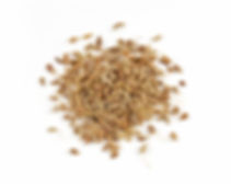 Food Export Group is the supplier of the aromatic anise seeds in bulk basis.