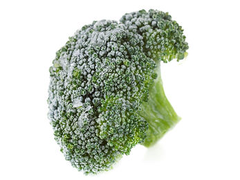 FoodExport Group supply high quality IQF Broccoli which meets the stardarts of IQF to be sure for the freshest produce.