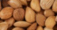 izmir organic apricot kernels.jpg