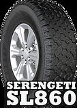 serengeti2 (1).png