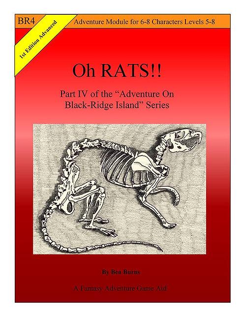 PDF - BR4: Oh Rats!!