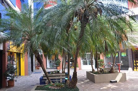 Agradável pátio interno com palmeiras e bancos para descanso