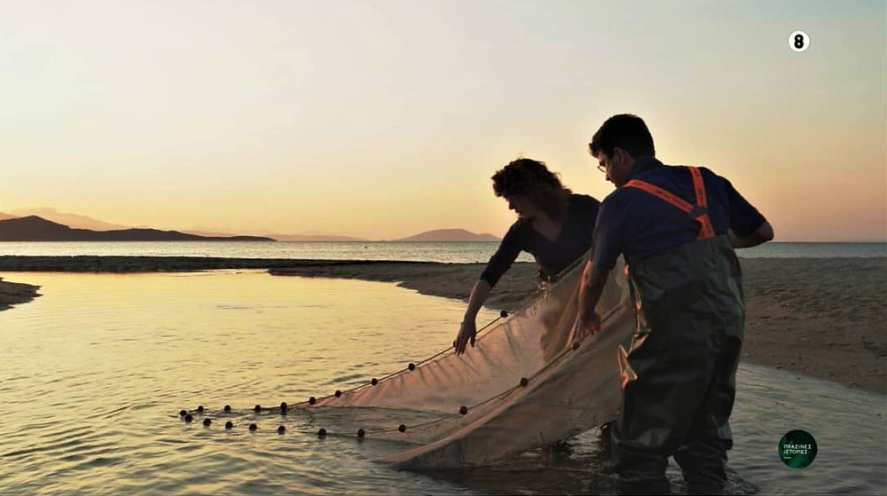 O ερευνητής Σταμάτης Ζόγκαρης κατά τη διάρκεια των γυρισμάτων στην παραλία Σχινιά (στο ποταμάκι) | Instagram @vangelis.efthymiou