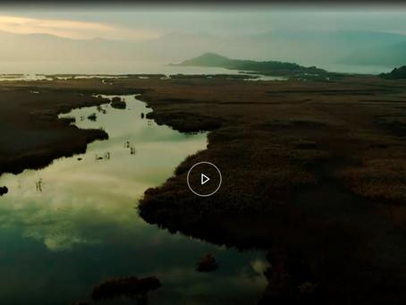 Το Εθνικό Πάρκο Σχινιά στο νέο πρόγραμμα της NATURA: LIFE IP 4  Ντοκιμαντέρ στο EΡΤflix