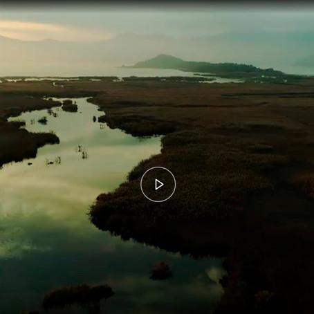 Το Εθνικό Πάρκο Σχινιά στο νέο πρόγραμμα της NATURA: LIFE IP 4 |Ντοκιμαντέρ στο EΡΤflix