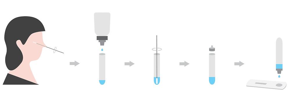 rapid test αντιγόνου