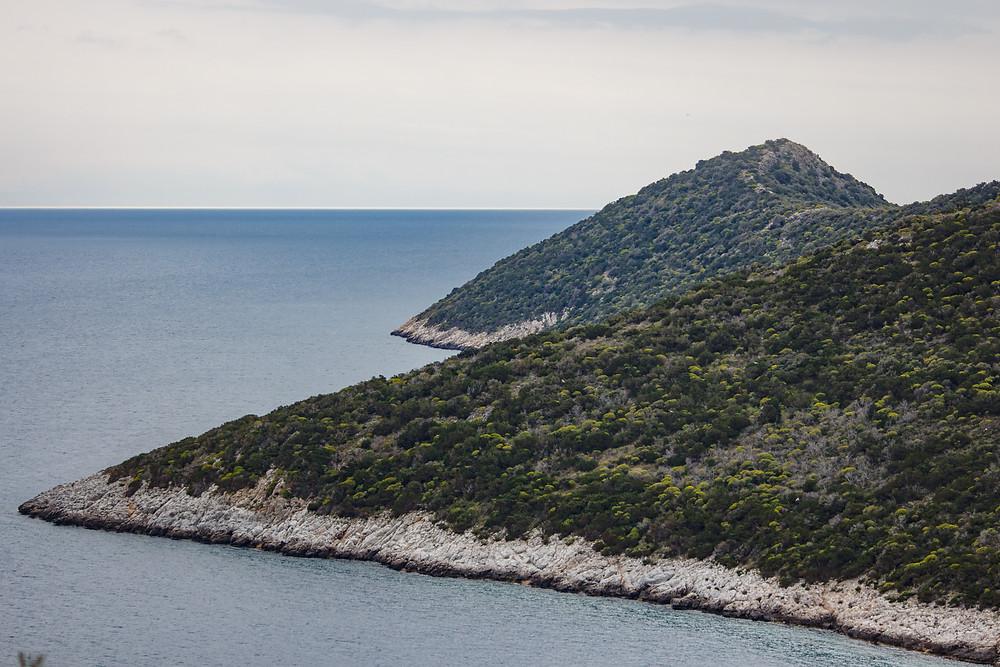 Καθαρές γραμμές σύριζα με τη θάλασσα, εντυπωσιακή Κυνόσουρα  | Φωτ.: Συνεργάτης του WLM Χάρης Φετέρης