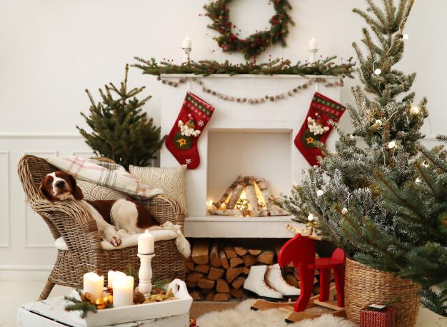 Η πιο τέλεια χριστουγεννιάτικη ατμόσφαιρα με τον σκυλάκο μας παρέα!   Φωτ.: Freepik