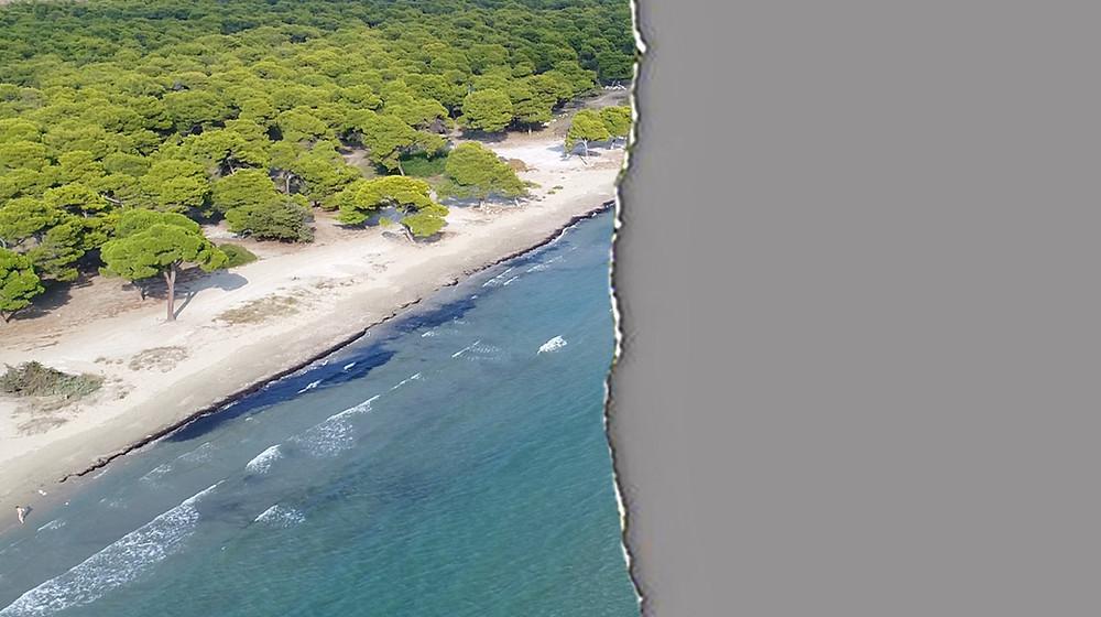 Ψήφισε ΟΧΙ στο νομοσχέδιο καταστροφής του Εθνικού Πάρκου Σχινιά