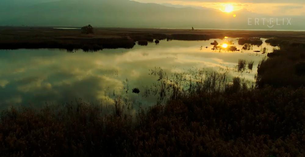 Ο υδροβιότοπος του Σχινιά | Πράσινες Ιστορίες - ΕΡΤflix