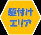 ハチ対応エリアボタン.png