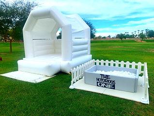 Biggie Bounce white.jpg