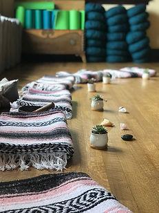 Blanket_Succulent pic.jpg