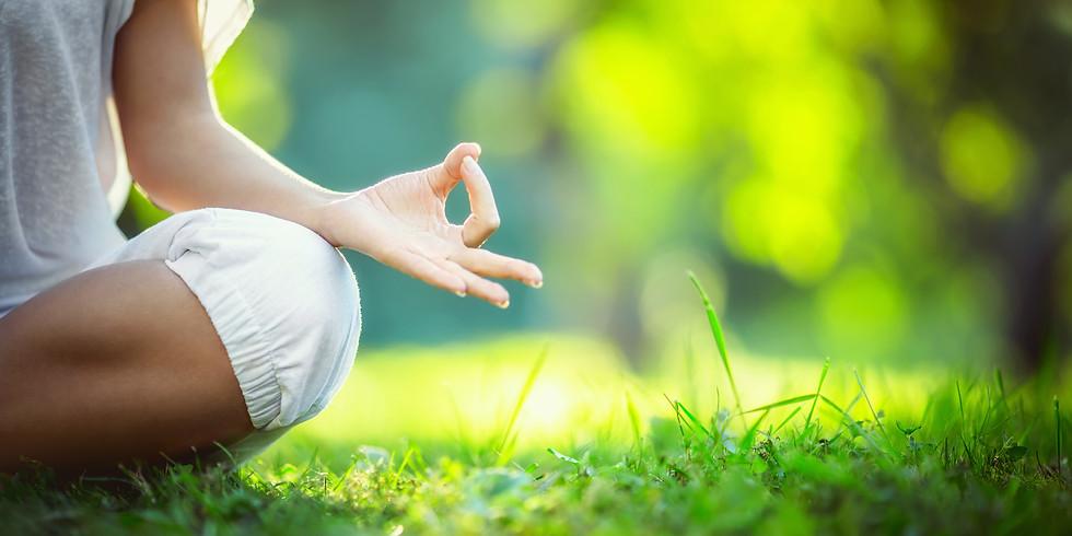 Pop Up Park Yoga at Butterfield Park - Pavillion