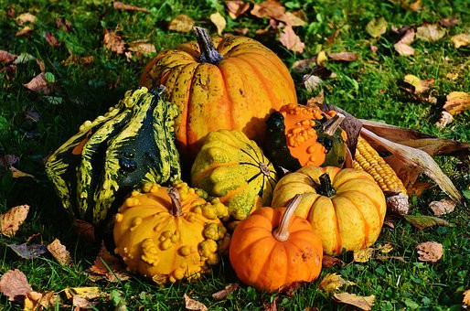 Thanksgiving--Gratitude of the Heart
