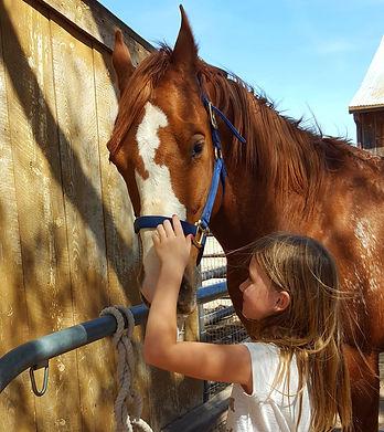 True Horsemanship
