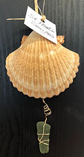carolyn shell.jpg